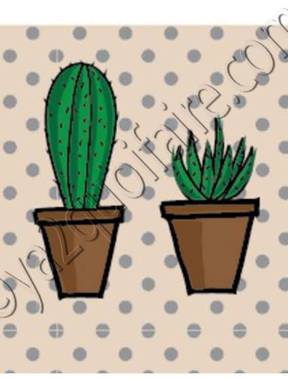 aimant cactus 2