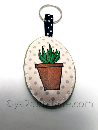 cactus langue de belle-mère