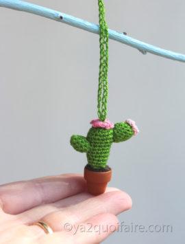 collier cactus4